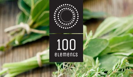 100 Elements - Canadore College